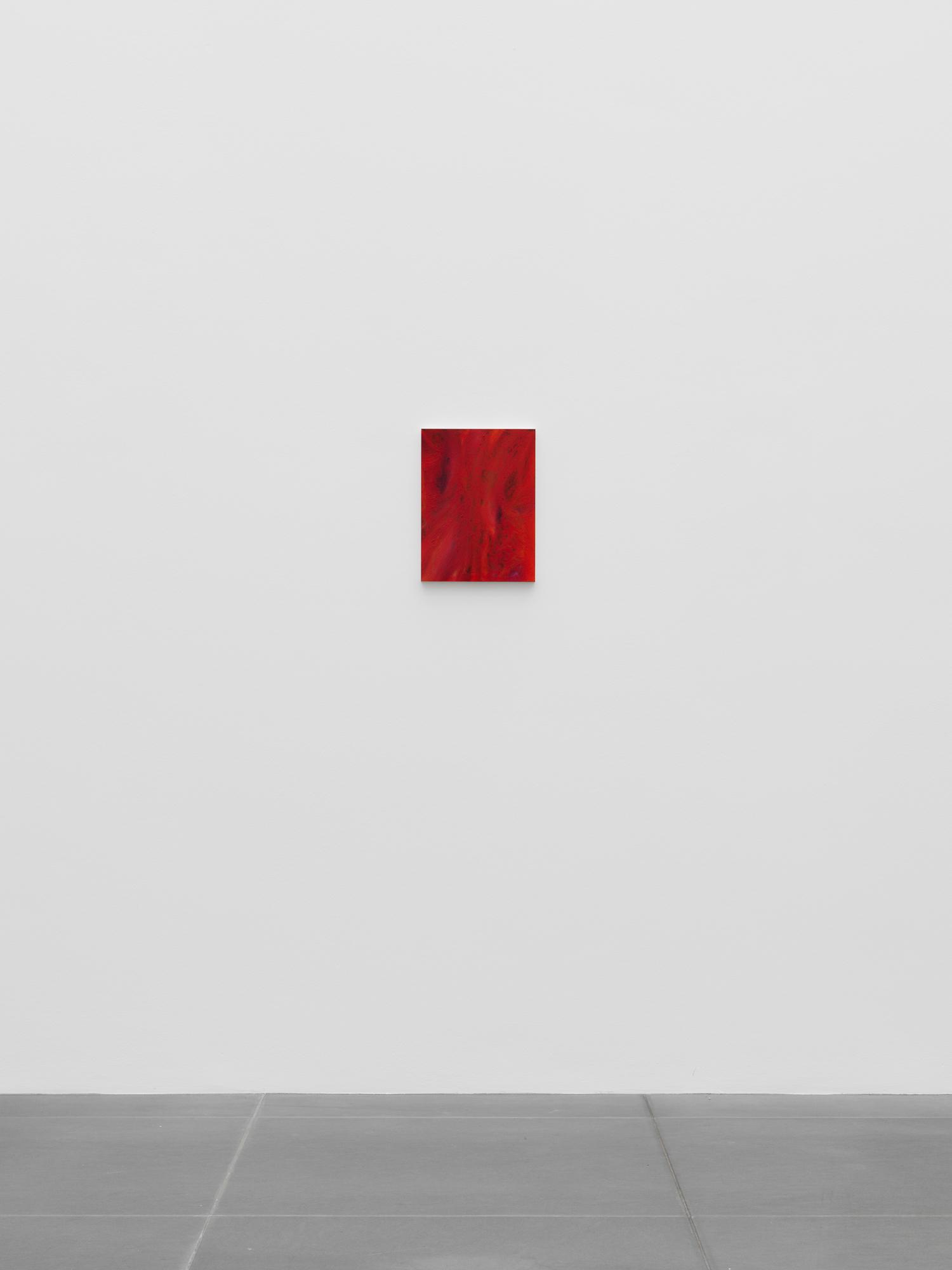 Michael Seidner. Siebzehn at Neues Museum